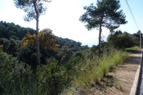 2831 Parcelas Santa Maria vista